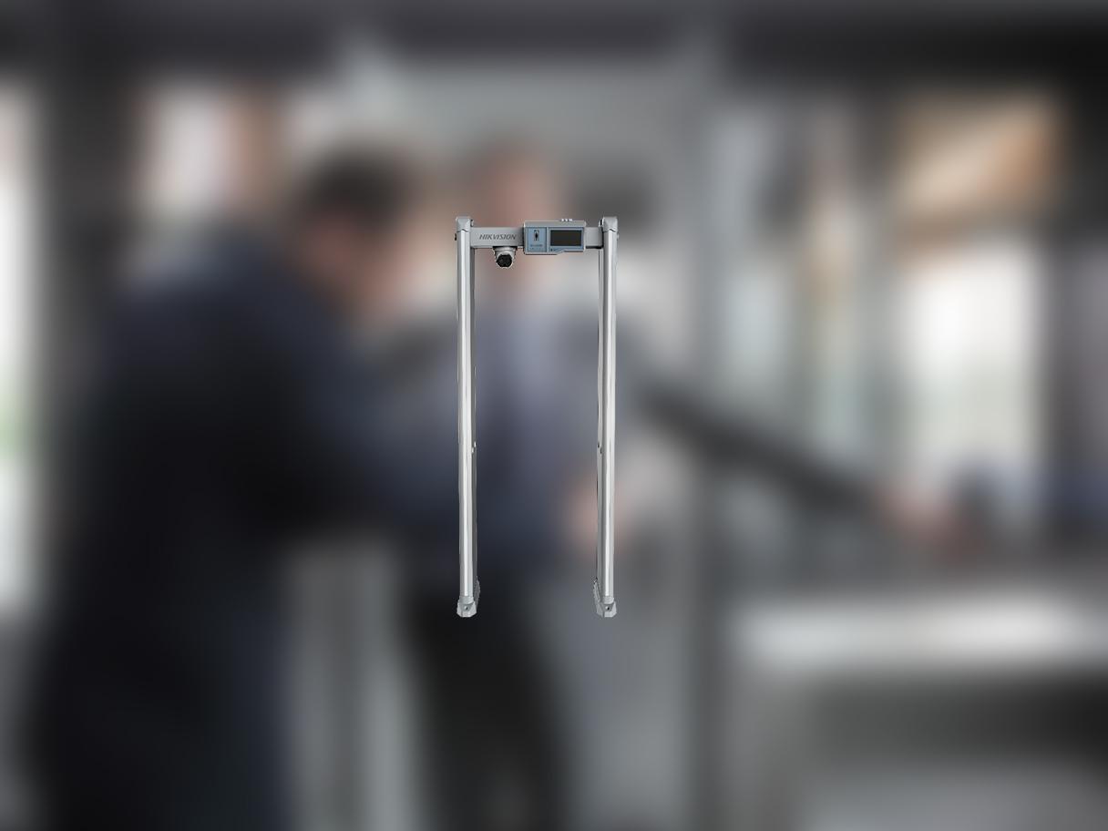 Metal Detector Gate 2